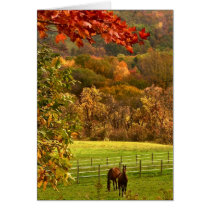 Horses in Autumn Thank You Card