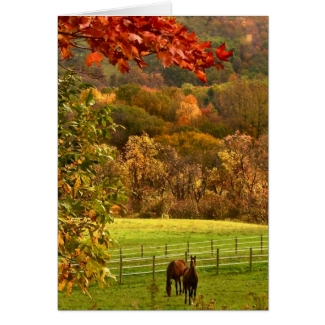 Horses in Autumn Thanksgiving