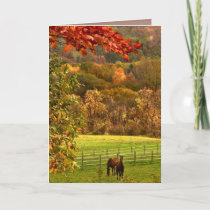 Horses in Autumn Thanksgiving Holiday Card