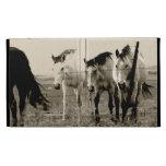 Horses in B/W Case iPad Case