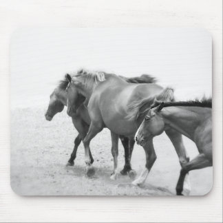 Horses in Black and White Photography Mouse Pad
