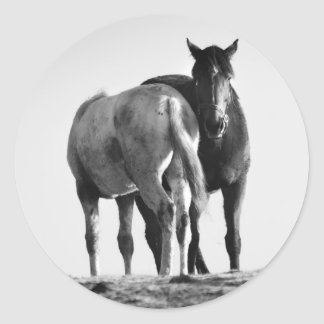 Horses in Black and White Stickers