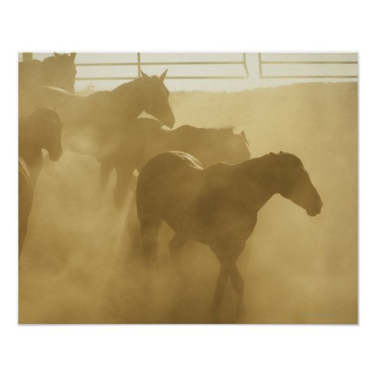 Horses in corral poster