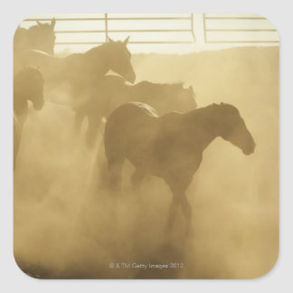 Horses in corral sticker