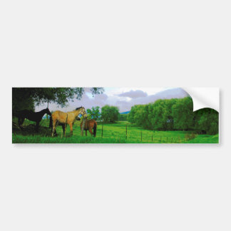 Horses in country bumper sticker