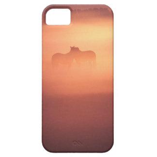 horses in dew iPhone SE/5/5s case