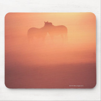 horses in dew mouse pad