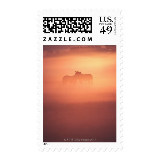 horses in dew postage stamps