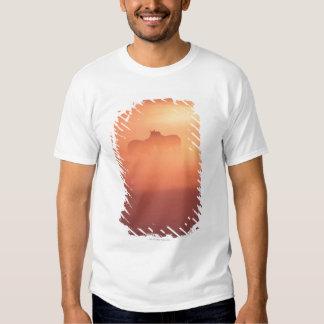 horses in dew T-Shirt