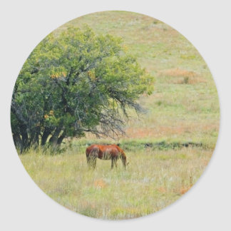Horses in Field Stickers