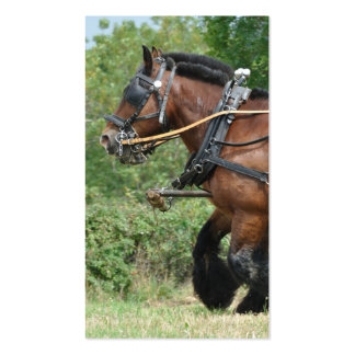 Horses in harness close up photo business card
