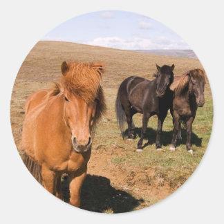 Horses in Krisuvik Classic Round Sticker