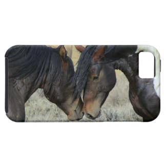 horses in love romantic iphone cover case iPhone 5 cover