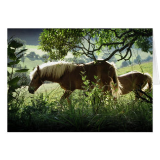 Horses In Meadow Card