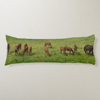 Horses in Pasture Body Pillow