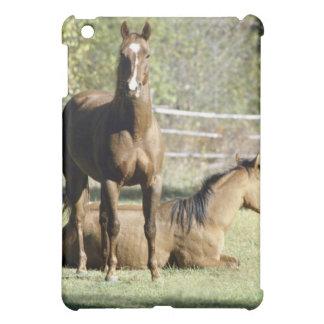 Horses in pasture iPad mini cases