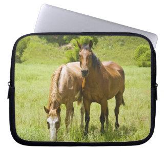 Horses in San Rafael Valley, Arizona Computer Sleeve