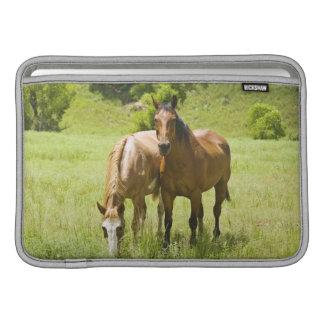 Horses in San Rafael Valley, Arizona MacBook Air Sleeve