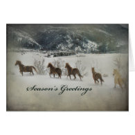 Horses In Snow Cards