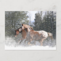 Horses in Snow Christmas Postcard
