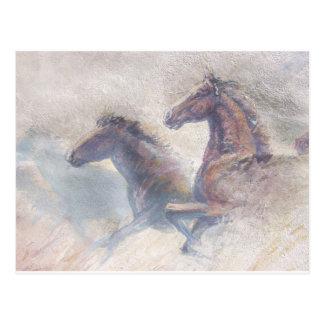 Horses In Stampede Postcard