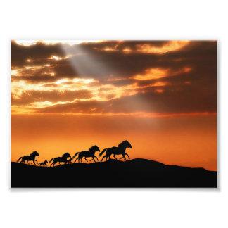 Horses in sunset photo print