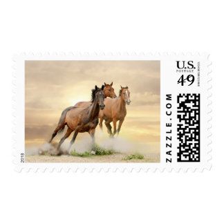 Horses In Sunset Postage