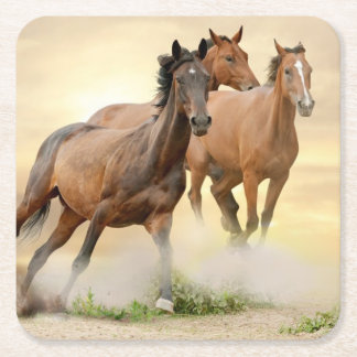 Horses In Sunset Square Paper Coaster