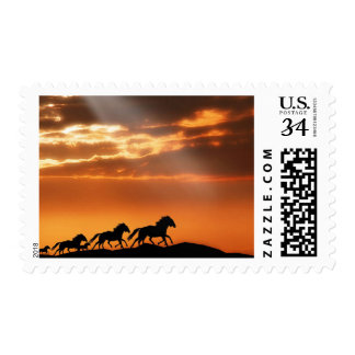 Horses in sunset stamp