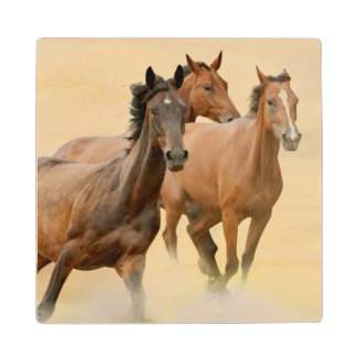 Horses In Sunset Wood Coaster
