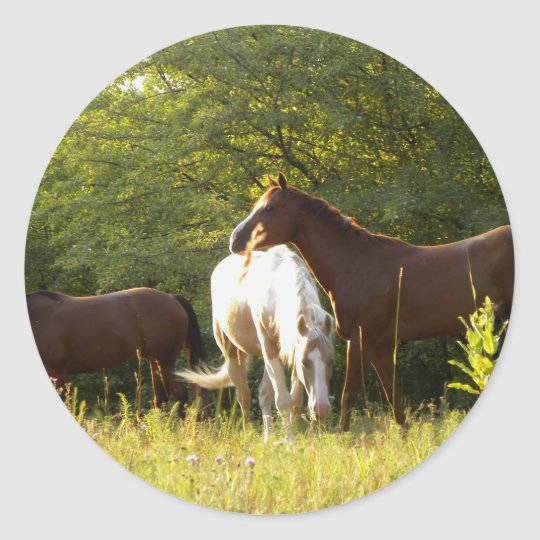 Horses in the Meadow Classic Round Sticker