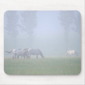Horses in the mist mouse pad