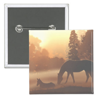Horses in the Morning Fog Button