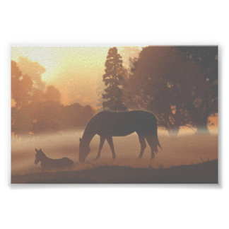 Horses in the Morning Fog Poster