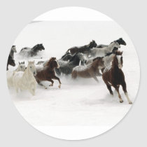 Horses in the snow classic round sticker