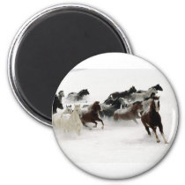 Horses in the snow magnet