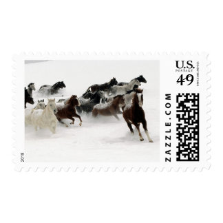 Horses in the snow postage