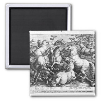 Horses in the wild refrigerator magnet