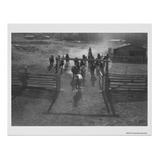 Horses into the corral poster