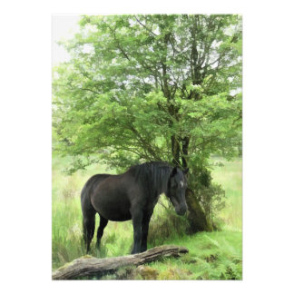 HORSES CUSTOM INVITE