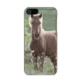 Horses Incipio Feather® Shine iPhone 5 Case