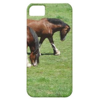 Horses iPhone SE/5/5s Case