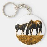 Horses Key Chains