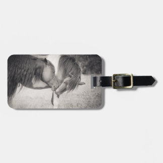 Horses Kissing Luggage Tag