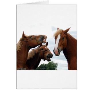Horses laughing cards