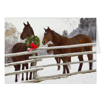 Horses looking over fence in snow card