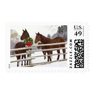 Horses looking over fence in snow postage
