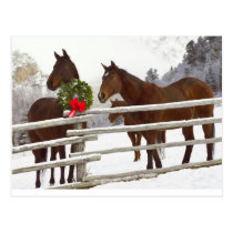 Horses looking over fence in snow postcard