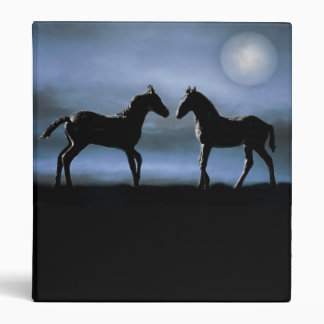 Horses making friends by moonlight vinyl binder