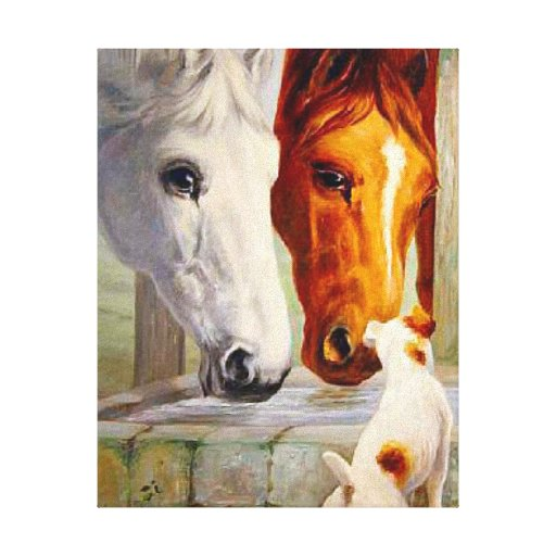Horses Making Friends Stretched Canvas Prints